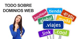 todo sobre dominios web