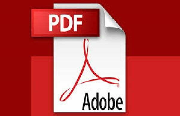 ¿Qué significa PDF?